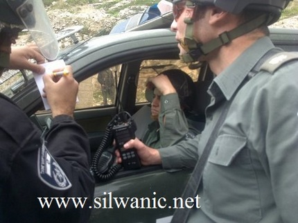 silwanic5.jpg