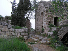 village_palestine.jpg